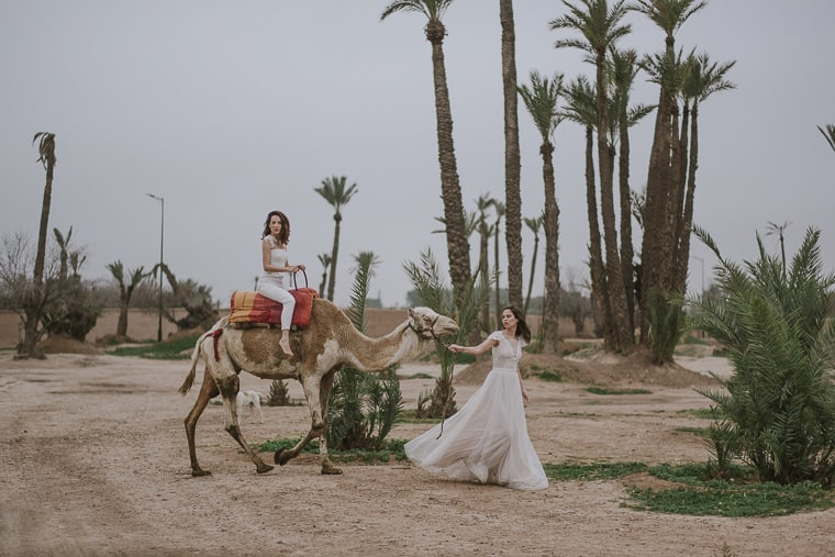 morocco wedding on camels